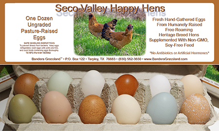 pasture raised eggs